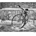 Bike in the Snow (black and white photograph)