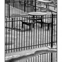 Fence and Benches (black and white photograph)