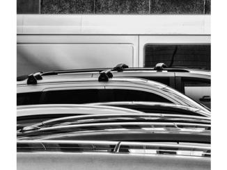 Auto Exposure (P1140516) (black and white photograph)