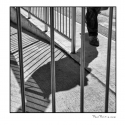 Behind Bars (black and white photograph)