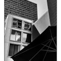 Patio Umbrella (black and white photograph)