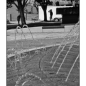 Water Fountains (Black and white photo)