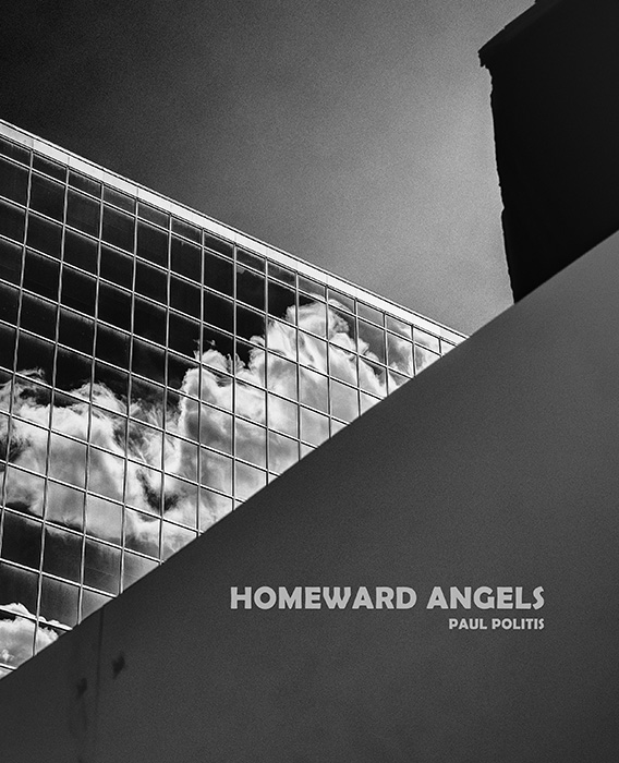 Cover of Homeward Angels (2019) by Paul Politis