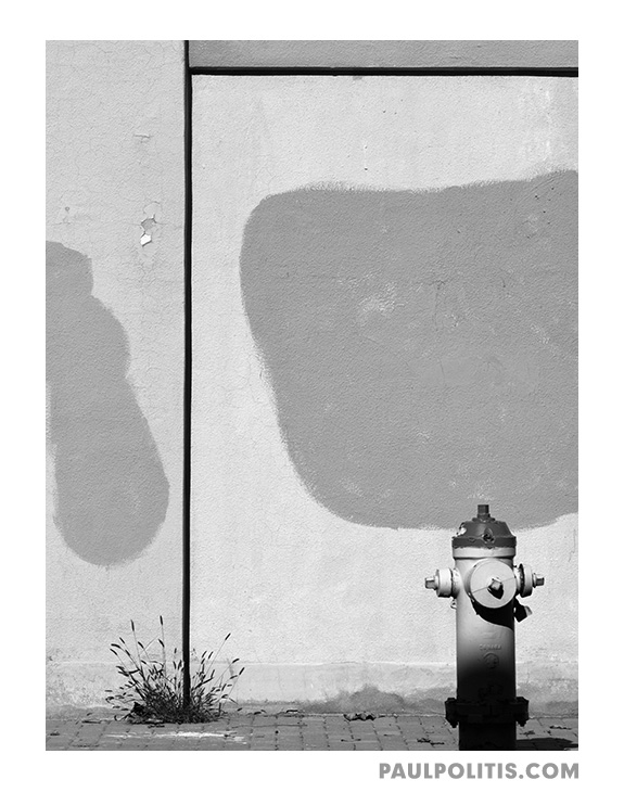 Hydrant and Weed (black and white photograph)