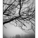 Lone House in Fog (black and white photograph)