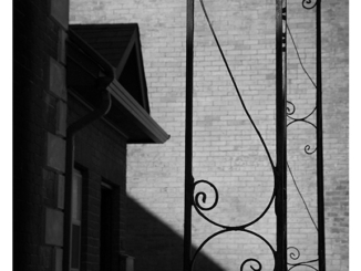 Curves (black and white photograph)