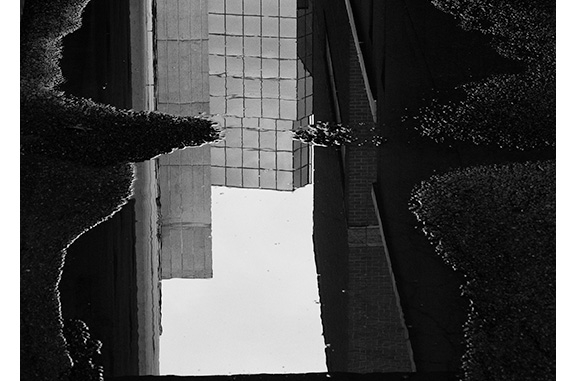 Puddle Reflection (black and white photograph)