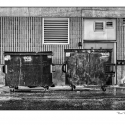Trash (black and white photograph)