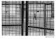 Urban Inmate P1050147 (black and white photograph)