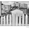 White Picket Fence (black and white photograph)